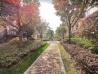 毕加索花园小镇